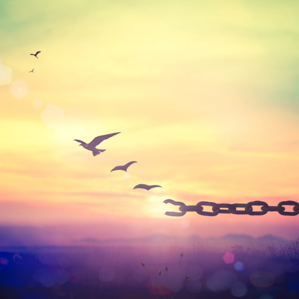 birds breaking free from a chain to signify Liberty